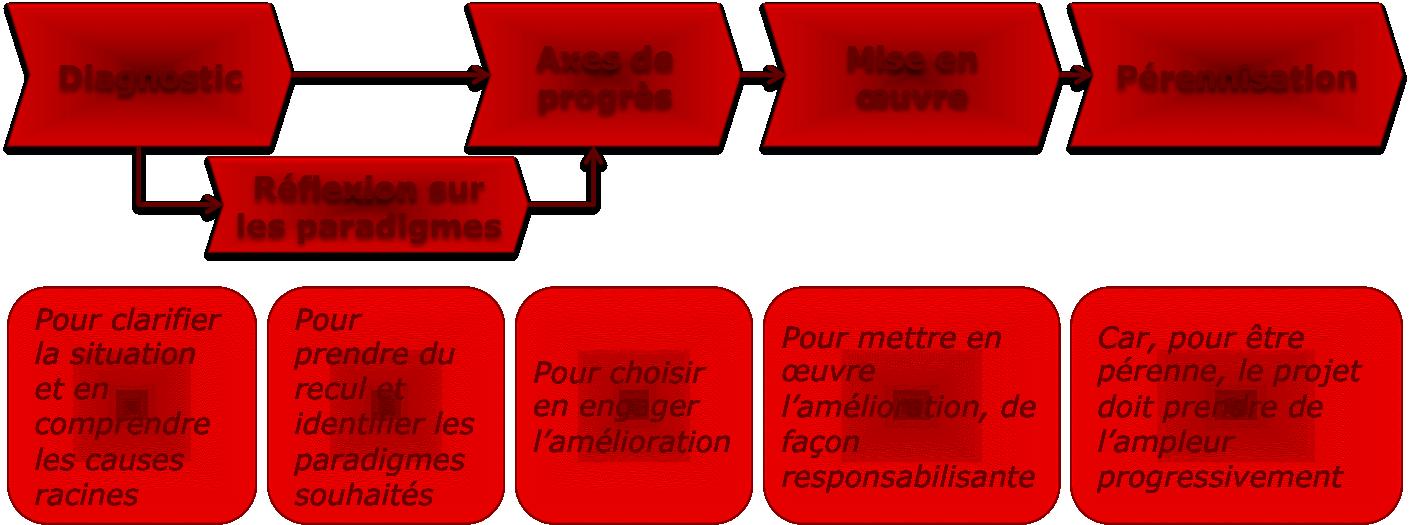 Diagnostic, Réflexion sur les paradigmes, axes de progrès, mise en oeuvre, pérennisation